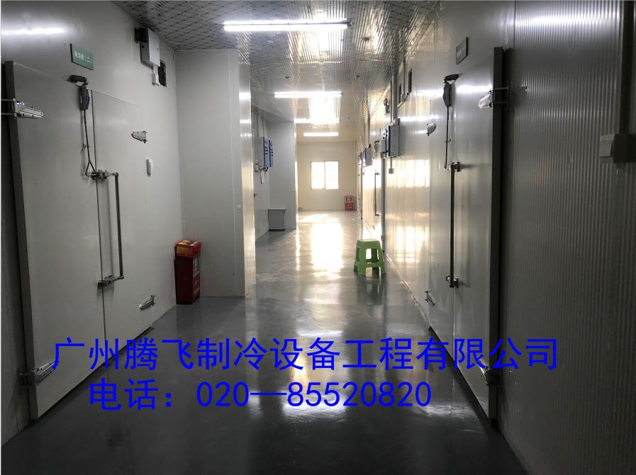 GSP认证医药物联网冷库—广州安信医药有限公司